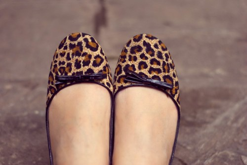 leopard print flats by 14 shades of grey